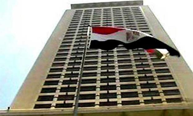 Egypt's Foreign Ministry to register observers in constitutional referendum