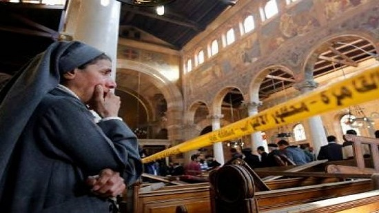 Egypt slams Amnesty International, HRW reports on cathedral blast