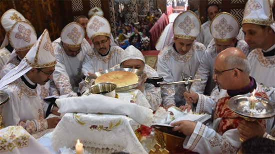 8 new priests ordained in Mallawy