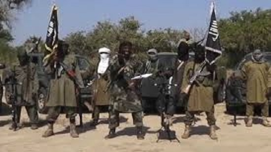 Boko Haram attacks in eastern Niger leave 10 dead: Mayor