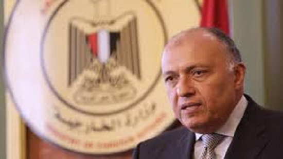 Egypt, Russia in agreement on Palestinian issue: Egypts FM Shoukry