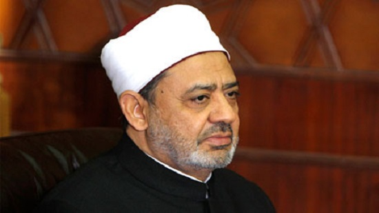 Al-Azhar grand imam praises formation of committee to implement objectives of Human Fraternity Document