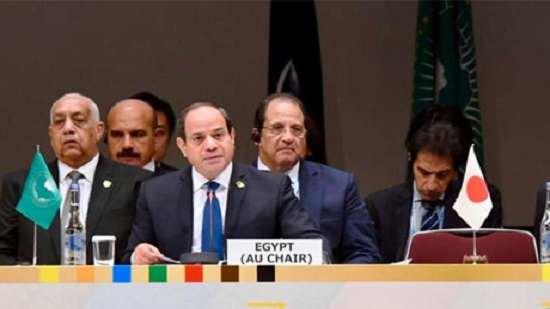 Egypts Sisi calls for promoting private-public cooperation in Africa