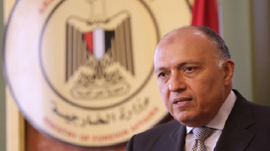 Egypt, France say Libyan-Turkish deals violate international law