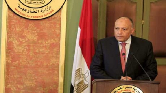 Egypts FM to forward message from Sisi to Algerian president