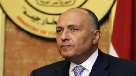 Egypts FM urges unified and firm Arab policy against Turkeys destructive practices