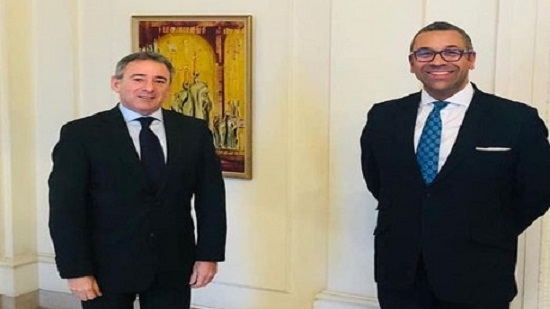 Egypt's regional role is pillar for security and stability in Middle East: UKs MENA minister