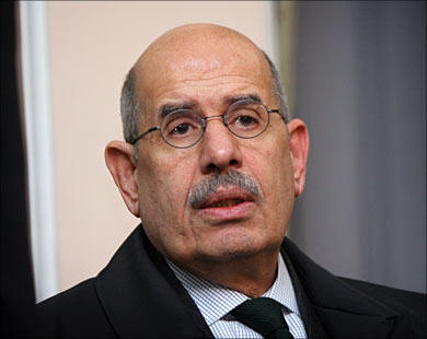 ElBaradei in hometown for family visit, say campaigners