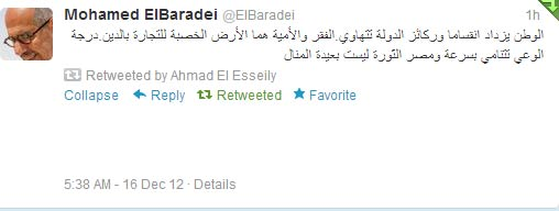 El-Baradei: Another revolution is at hand!