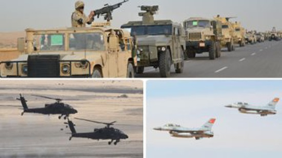 Egyptian Armed Forces destroys 317 terrorist hideouts in Sinai